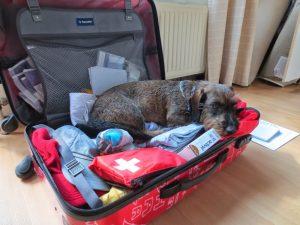 Doortje in de koffer