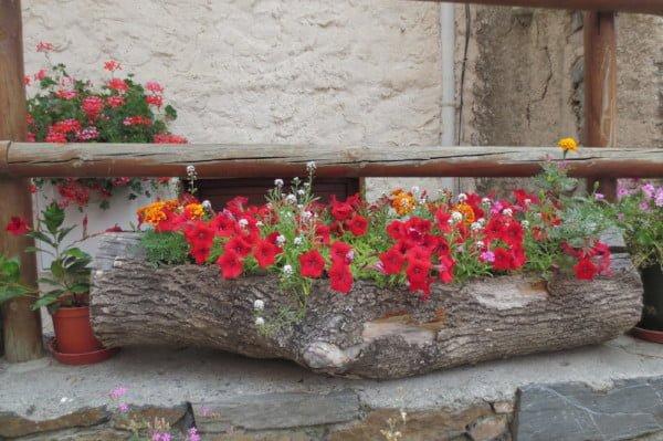 Bloemenpracht in Bourg-Saint-Maurice