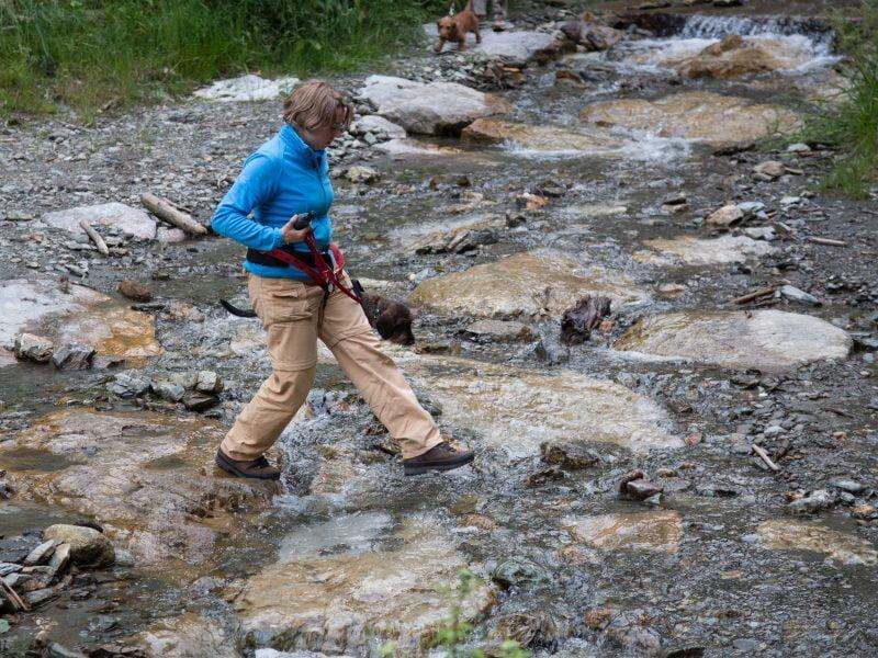 Geocachen in Oostenrijk met de hond