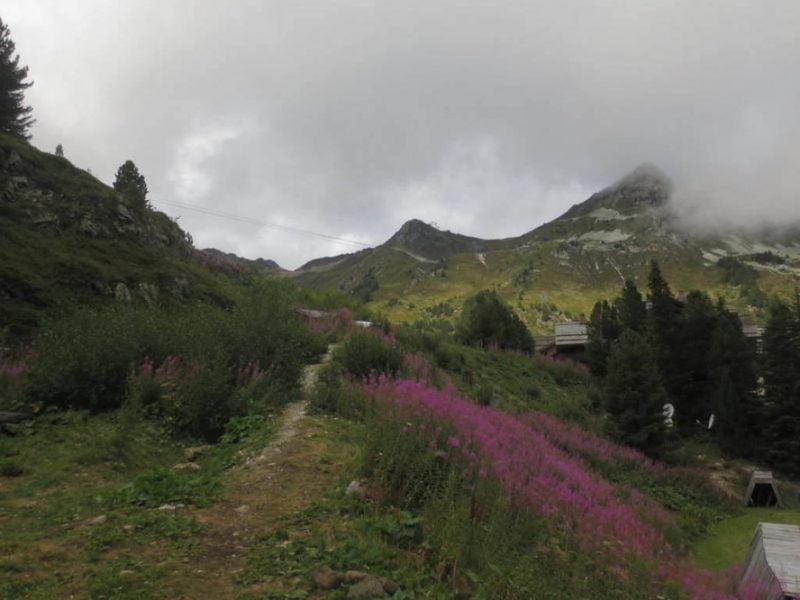 Natuur in de Franse Alpen