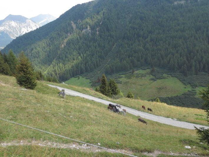 Mooi uitzicht in de Franse Alpen