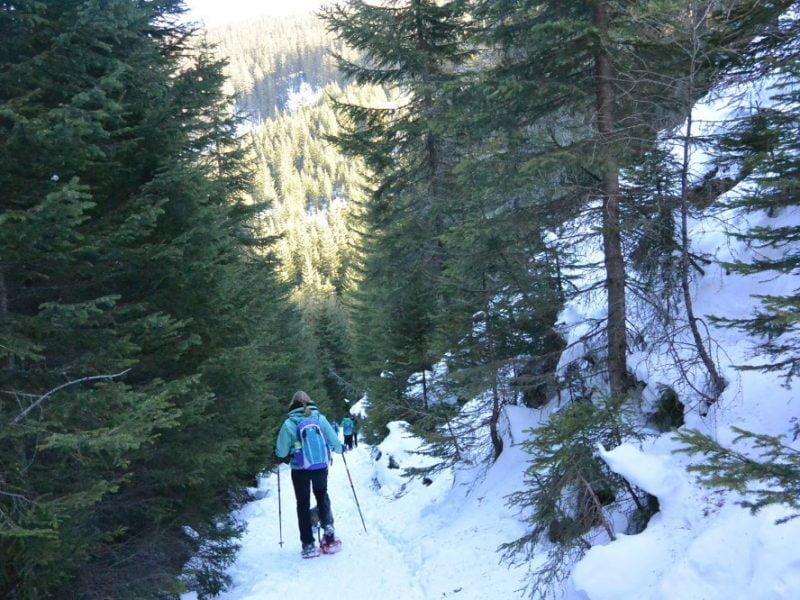 Met de teckel sneeuwschoenwandelen in de Rauris
