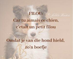 Betekenis van de naam van Sheltiepup Filou