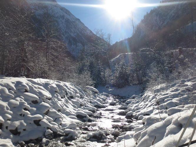 Genieten van de zon die schittert op de sneeuw