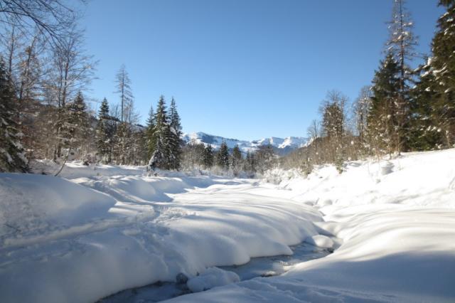 Sneeuwwit Oostenrijk