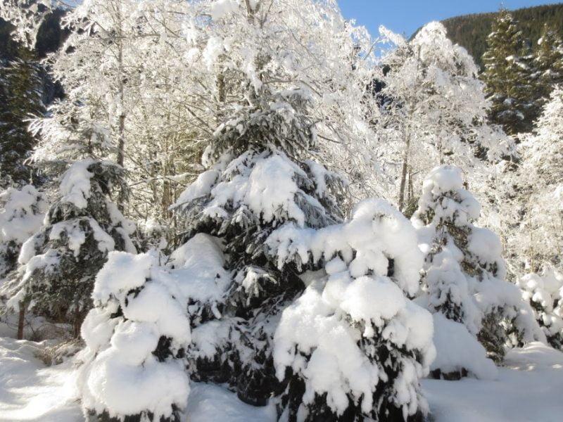 Sneeuwwit landschap in Oostenrijk