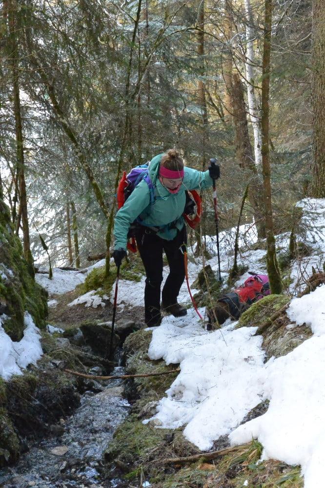 Wandelen met de teckel in de winter in de bergen
