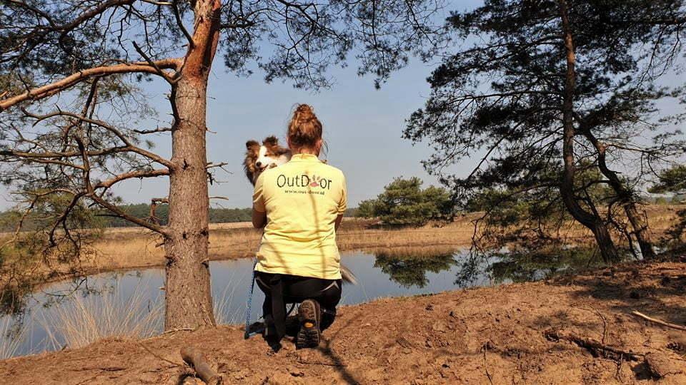 Filou de sheltie van OutDoor - Waarom met hond alles twee keer zo leuk is