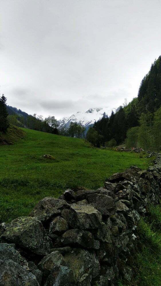 wandeling met de hond in Hollersbach