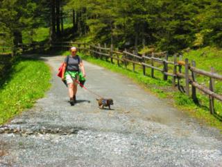 Wandelen met de hond bij de Hintersee