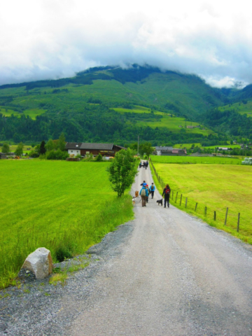 Wandelenmet de hond in Oostenrijk
