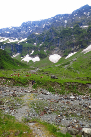 Hintersee in Oostenrijk