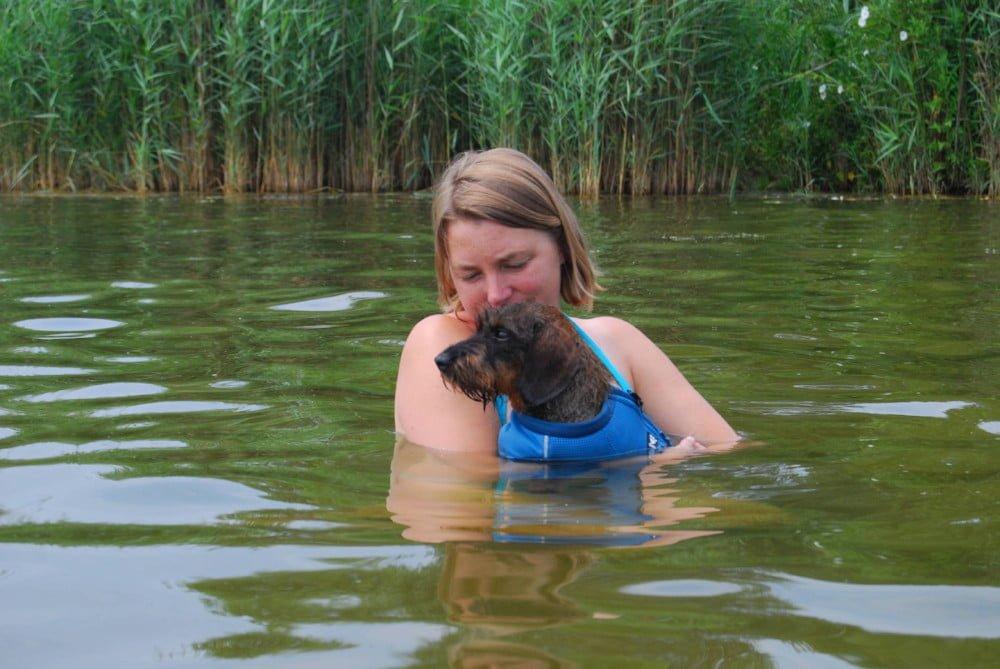 met de hond in het water