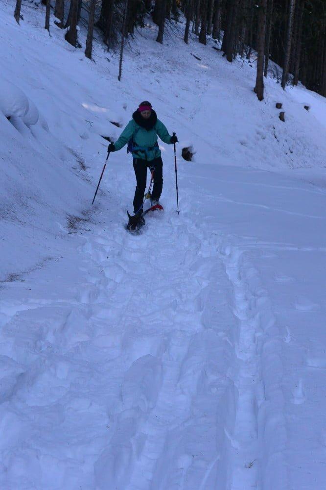 Sneeuwschoenwandelen met teckel