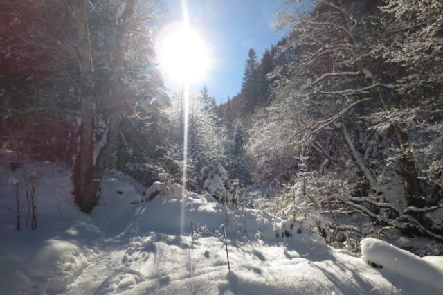 De zon schittert op de sneeuw