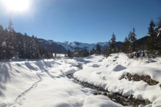 Beekje in de sneeuw in Oostenrijk