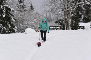 Sneeuwschoenwandelen met de hond in Oostenrijk