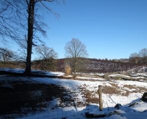 Natuurgebied Veluwezoom-Posbank