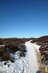 Natuurgebied met hoogteverschillen Veluwezoom-Posbank
