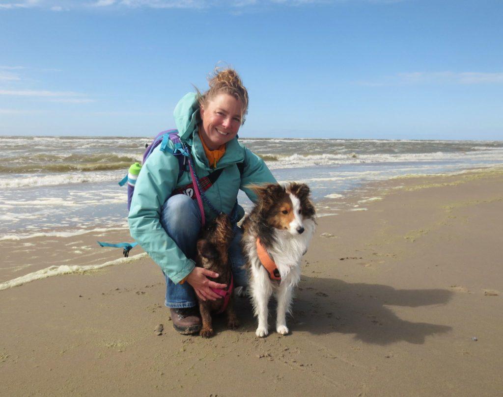 met de honden op het strand